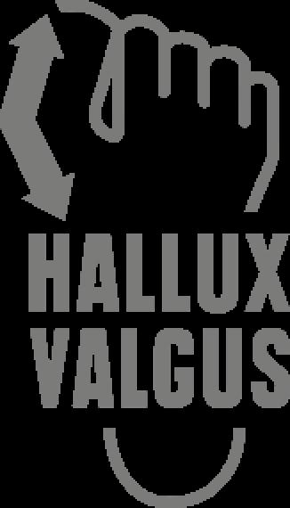 2013-hanwag-hallux
